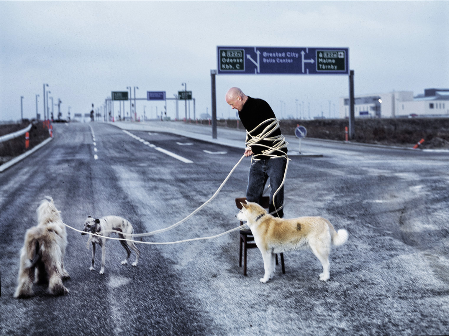 people_031.jpg,Per Morten Abrahamsen,Danish photography, Denmark,Danmark,København,Copenhagen, portrait photography,portraiture,portrait,portraits,kendis,celebrity,komiker,stand-up,comedian,hunde,dogs,freeway